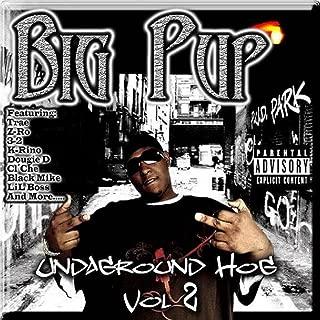 Da Movement (feat. Mike Hustle, Dougie D, Playa 4 Mayor & Coop D da King) [Explicit]
