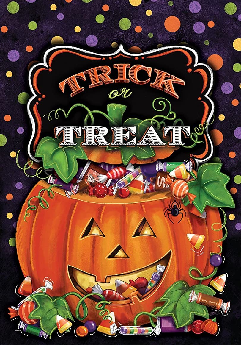 Trick or Treat - STANDARD Size, 28 Inch X 40 Inch, Decorative Double Sided Flag MADE IN USA by Custom Décor Inc.
