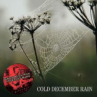 Cold December Rain