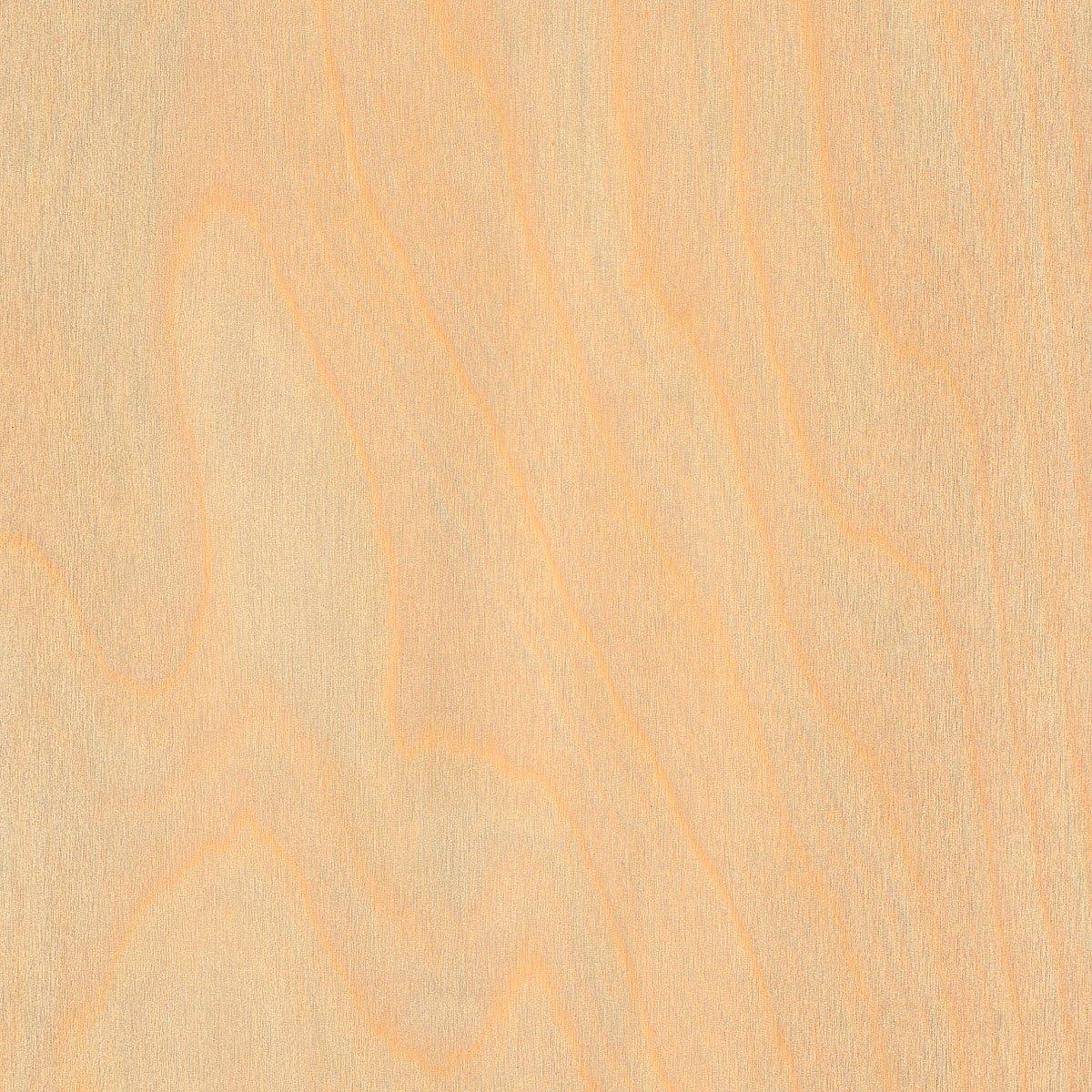 Wood-All New Free Shipping Birch White Wood Veneer Gr 48x96