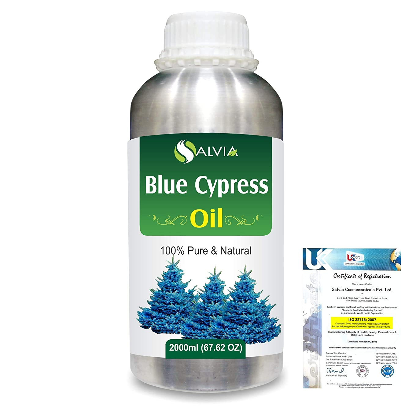 文句を言うプレミア世界の窓Blue Cypress (Callitris Columellaris) 100% Natural Pure Essential Oil 2000ml/67 fl.oz.