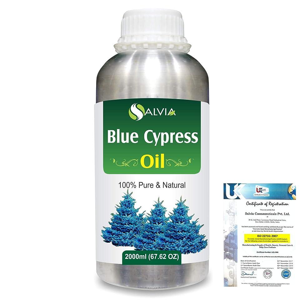 私の鈍い仮称Blue Cypress (Callitris Columellaris) 100% Natural Pure Essential Oil 2000ml/67 fl.oz.