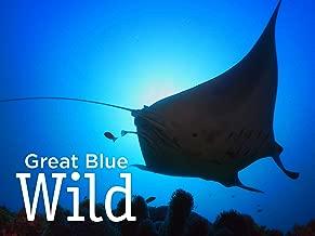 Great Blue Wild - Season 2