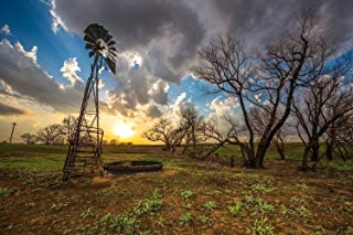 Western Wall Art Photography Print - Picture of Windmill and Charred Trees at Sunset in Southern Kansas Country Home Decor 5x7 to 40x60