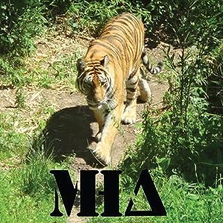 Matt Holdaways Army-Tiger