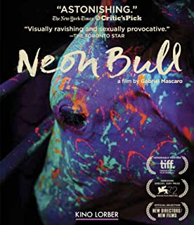 Best movie neon bull Reviews