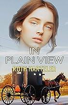 In Plain View: Christian Romantic Suspense (Amish Safe House Christian Romantic Suspense Book 2)