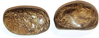 2pc Set Bronzite Medium/Large A-Grade Tumbled & Polished Very Protective Natural Healing Crystal Gemstones from Brazil