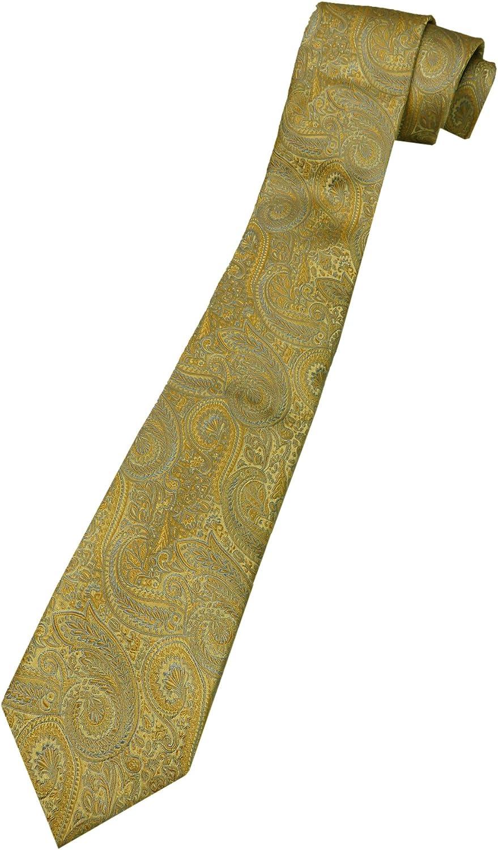 Chaps Men's Boswell Paisley Stretch Necktie Tie
