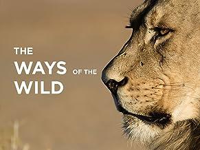 Ways of the Wild