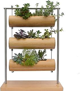 Martrams Bamboo Succulent Planter Pot Hanging Holder Home Office Desk - Mini Cactus Indoor Decoration Pot