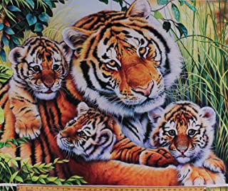 Best mama tiger and cubs Reviews