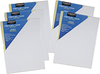 Sargent Art 16x20 inch Value Pack 16 x 20 Inch Stretched Canvas Pack of 5, 5 Piece