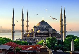 MOSCHEE fotobehang VLIES-350x260 cm (3611A) - Istanbul Palast vogels slot oude stad Turkije wandbehang-incl. behangpapier ...