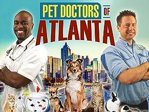 Pet Doctors of Atlanta