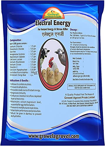 Growel Electrolyte With Minerals & Vitamins For Instant Energy 250 Gm
