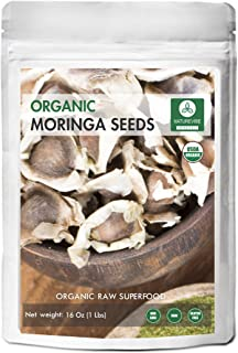 Best moringa ovalifolia seeds Reviews