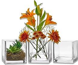 Best square glass vase ideas Reviews