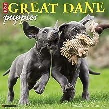 Just Great Dane Puppies 2021 Wall Calendar (Dog Breed Calendar)