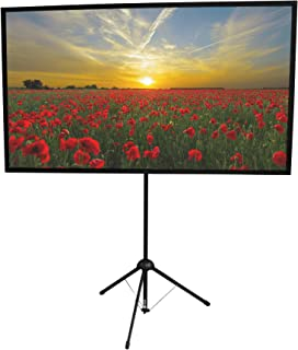 GO-60 Portable Projector Screen | 60 inch | Mounts on Tripod AND Wall | 16:9 format | 9 lbs | 2 minute setup | Includes Ca...