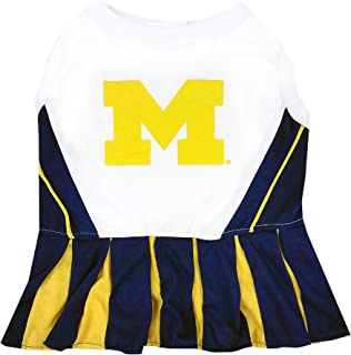 michigan cheerleader dog costume