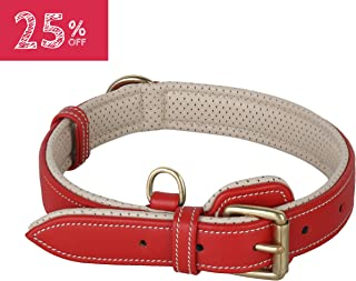 PawFurEver Soft & Breathable Padded Leather Dog Collar | Features an Elegant Design | Heavy Duty Dog Collar | Keeps Your Dog Comfortable (Available for Small, Medium, Large and XLarge Breeds)