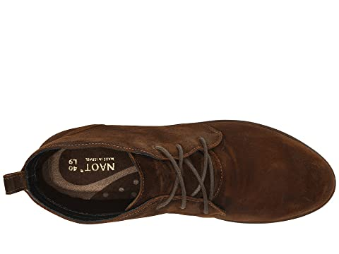 Levanto Naot Naot Suede Naot Seal Brown Levanto Brown Suede Levanto Seal tqwx4SB