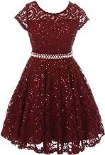 Cap Sleeve Glitter Lace Pearl Holiday Junior Bridesmaid Flower Girl Dress USA