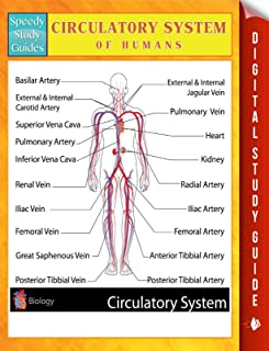 Circulatory System Of Humans Speedy Study Guides