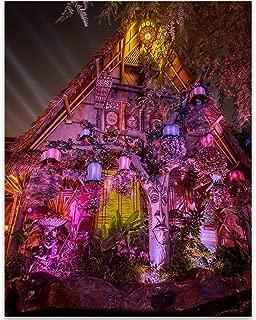 Best enchanted tiki room decor Reviews