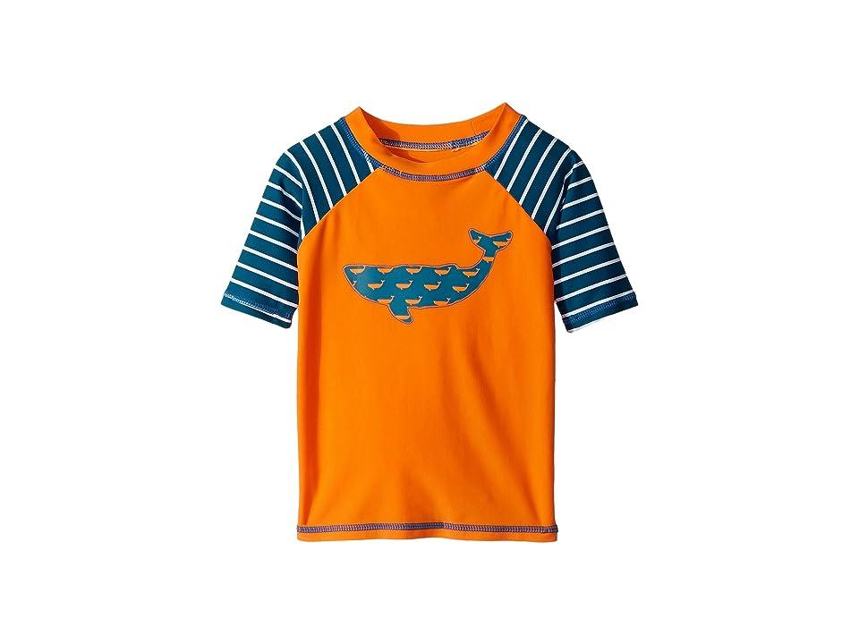 Hatley Kids Tiny Whales Short Sleeve Rashguard (Toddler/Little Kids/Big Kids) (Orange) Boy