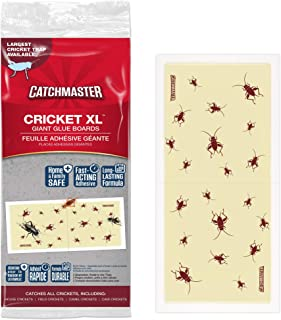 Catchmaster Cricket XL, Largest Cricket Trap Available – 6 Glue Traps Product Name
