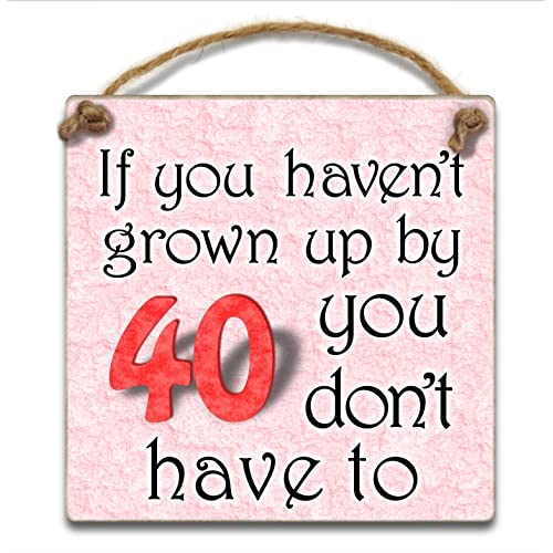 HmHome Pink Hanging Plaque If You Havent Grown Up By 40 Don