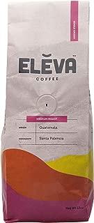 Eleva Medium Roast Guatemala Fair-Trade Coffee (Ground, 12 oz Bag)