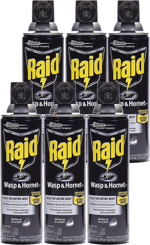 Raid Clearance SALE! Limited time! Wasp Hornet 5 ☆ very popular Killer Spray 14 oz - 6 Pack