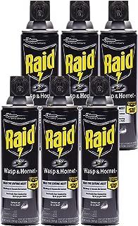 Raid Wasp & Hornet Killer Spray, 14 OZ (Pack - 6)