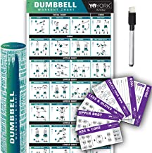 Yoyork Workout Posters for Dumbbell Training - Laminated Home Gym Workout Poster with 10 Workout Cards for Free Weight, Body Building Exercise - 17