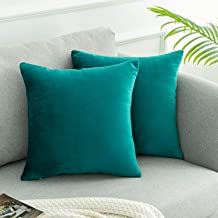 WLNUI Set of 2 Soft Velvet Solid Teal Blue Decorative Square Throw Pillow Covers Set Cushion Case for Sofa Couch Home Decor 20x20 Inch 50x50 cm
