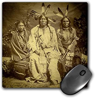 3dRose Mouse Pad Vintage Stereoview Card 1875 Native American Sioux Chiefs in Iowa - 8 by 8-Inches (mp_300275_1)