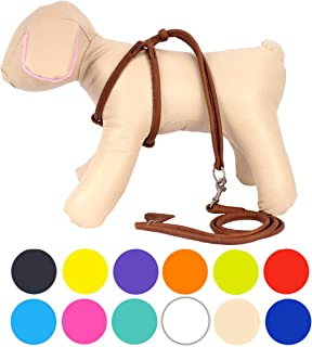 Best soft rolled leather dog harness Reviews