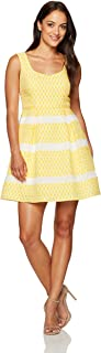Women's Fit and Flare Petite Dress