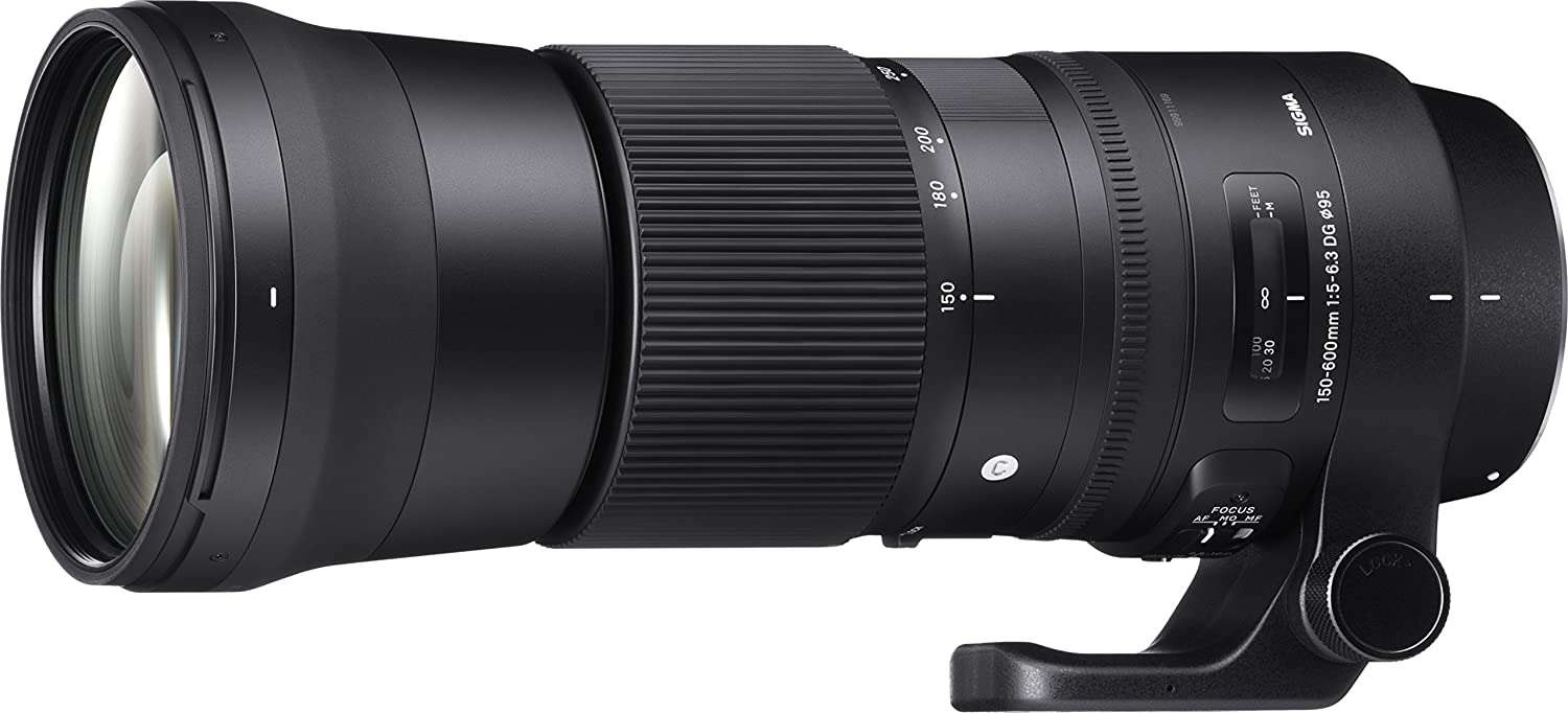 Sigma Our shop OFFers the best service shipfree 150-600mm 5-6.3 Contemporary DG OS HSM Canon for Lens