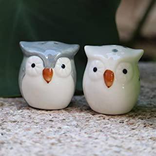 Best owl salt and pepper shakers Reviews