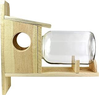 squirrel feeder with glass jar