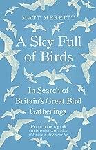 A Sky Full of Birds (Nicole Graves Mysteries)