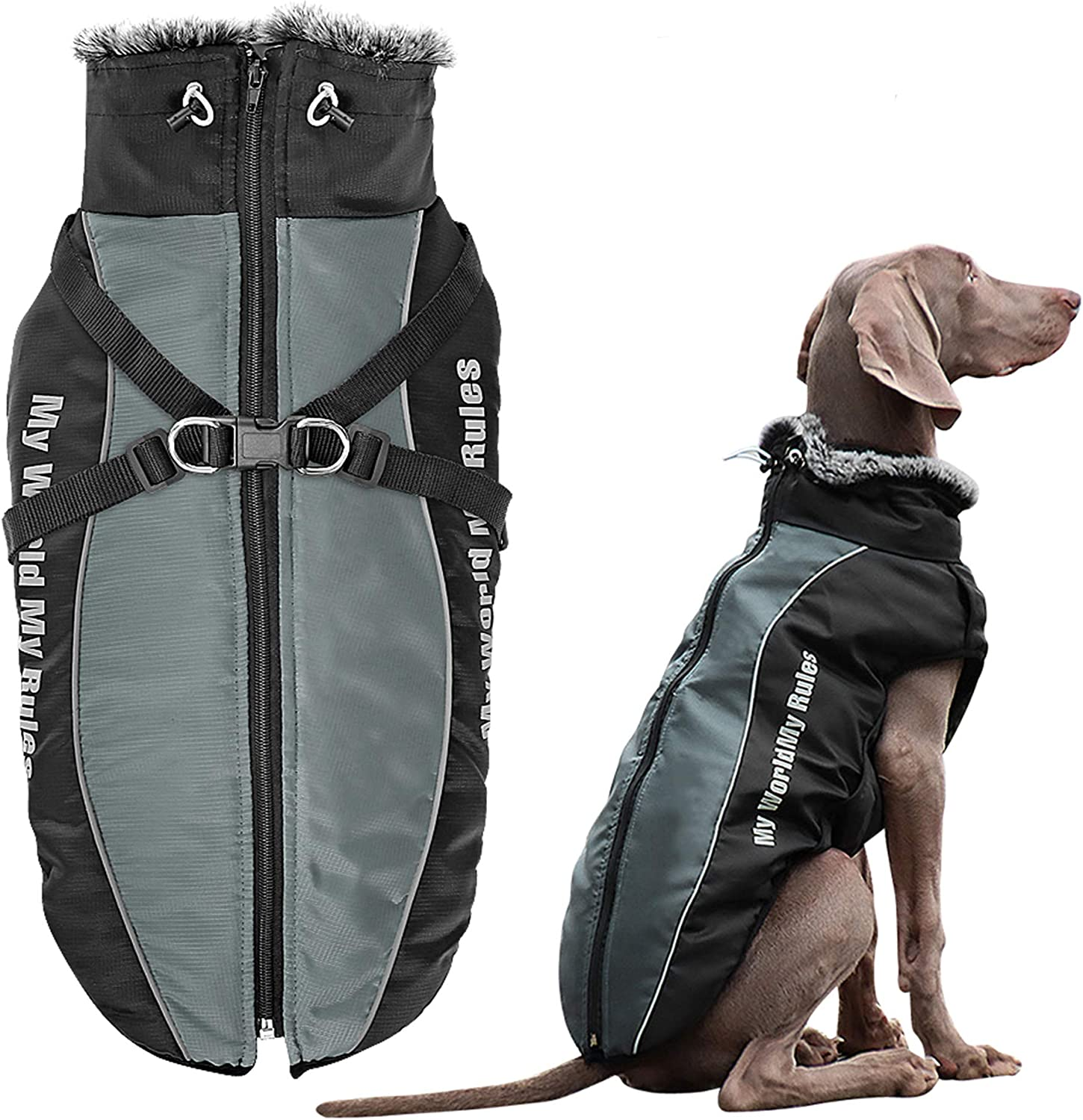 Didog Waterproof Beauty products Dog Winter Jackets Weather with Trust Coats Cold
