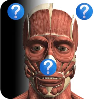 Anatomy Quiz Lite