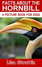 Facts About The Hornbill (A Picture Book For Kids 67)
