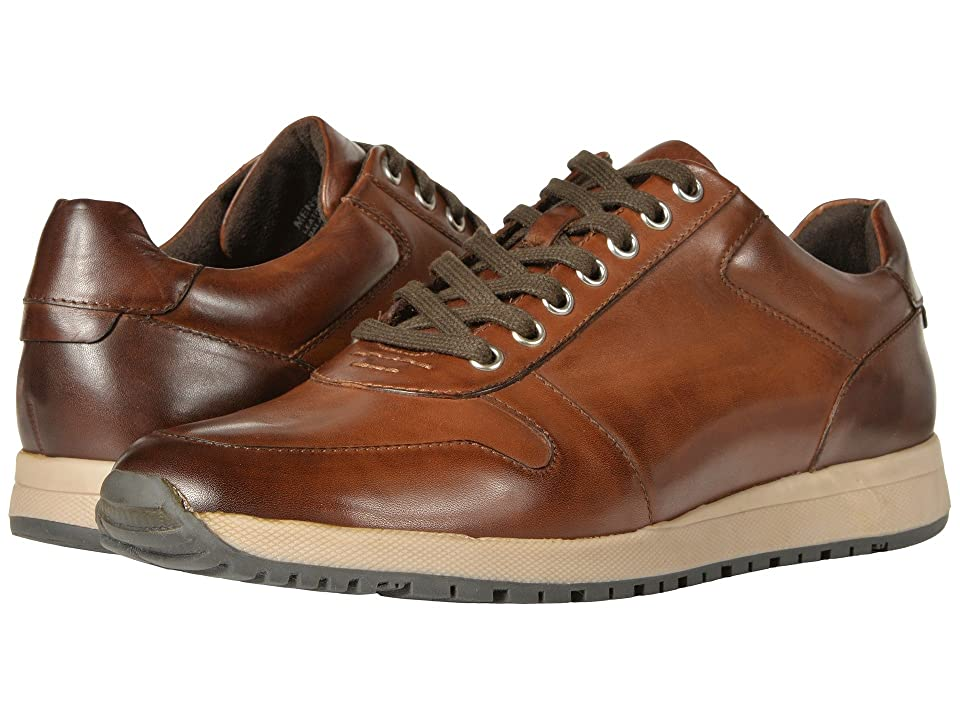 Stacy Adams Axel Retro-Runner Lace Up Sneaker (Brown) Men