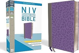 niv giant print bible